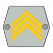 Arvomerkit icon