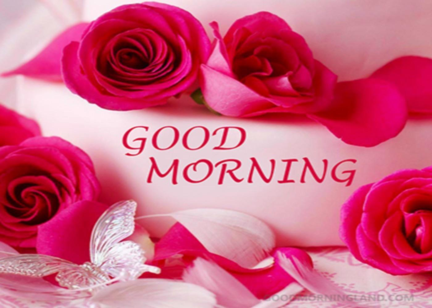 Good Morning Flowers Images GIF for Android - APK Download