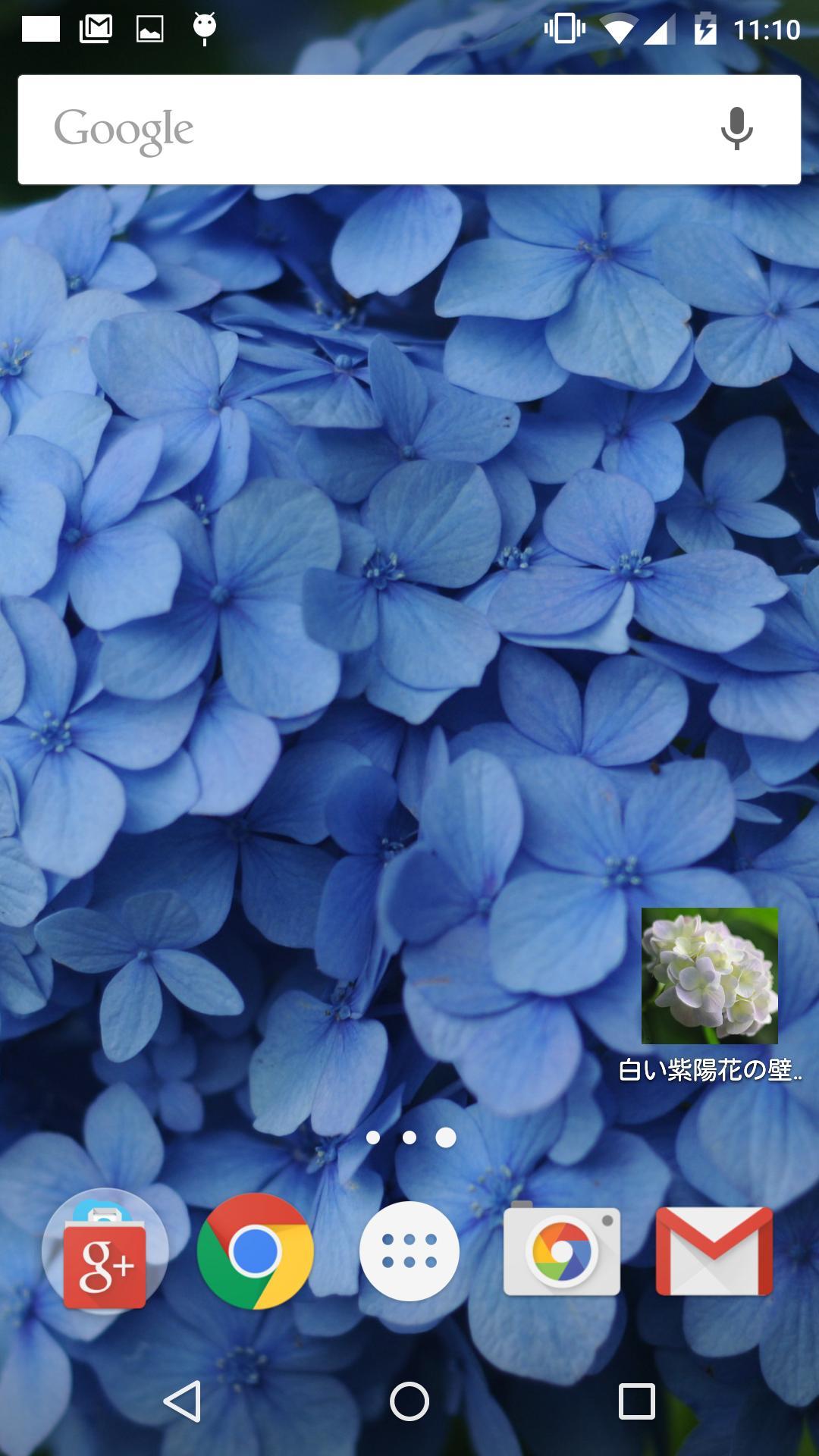 青色や水色の紫陽花の壁紙 無料版 Free Fur Android Apk Herunterladen
