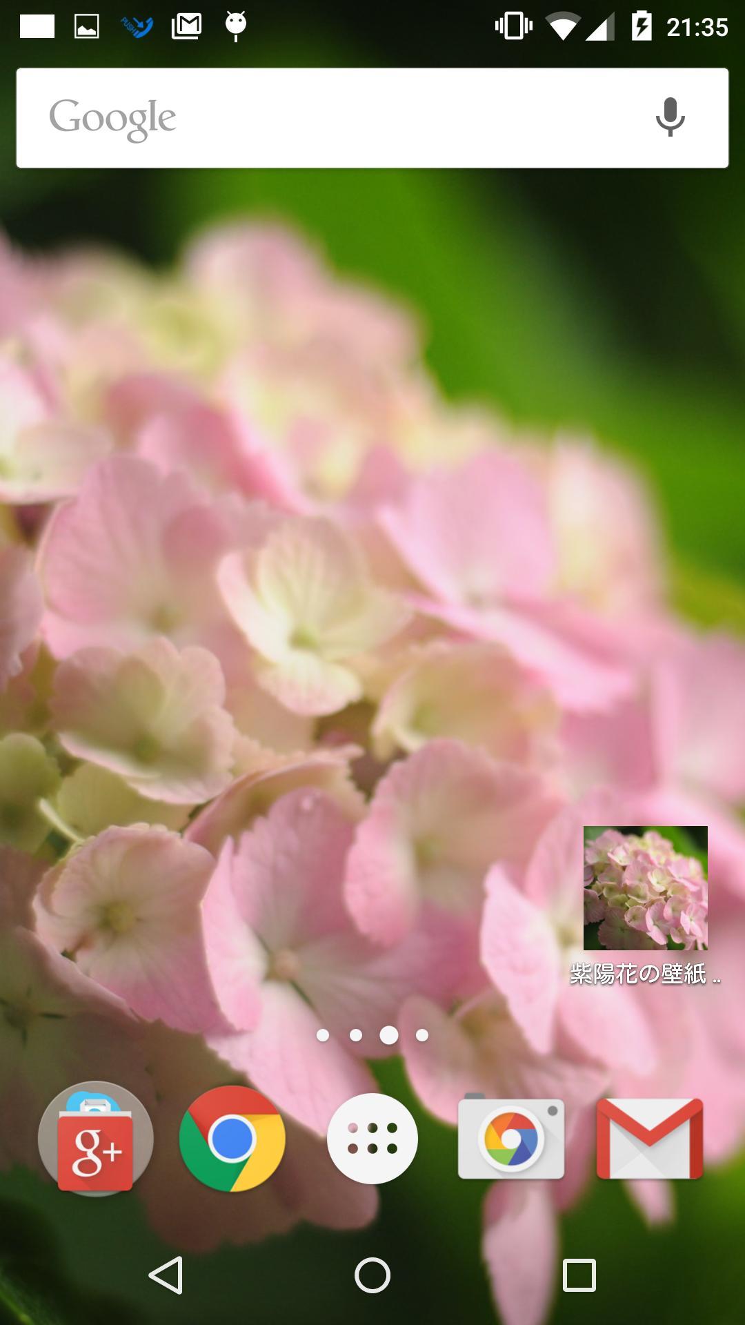 ピンク色の紫陽花の壁紙安卓下载 安卓版apk 免费下载