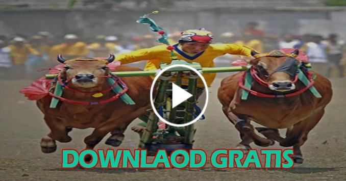 Video Karapan Sapi Madura screenshot 4