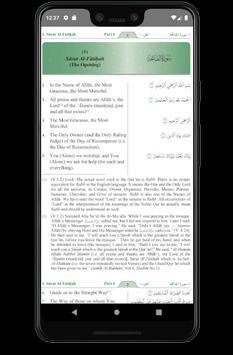Qur'an translation screenshot 5