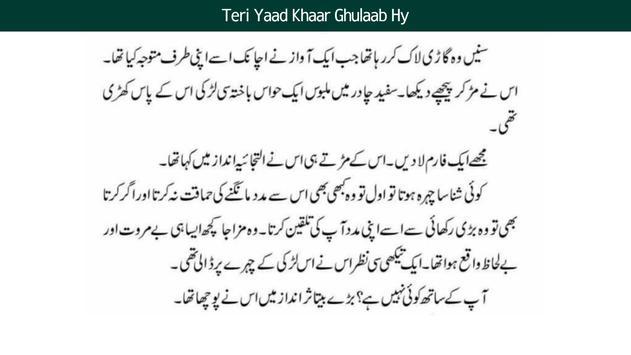 Urdu Novels Offline - 4 Best Urdu Novels screenshot 2