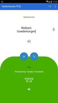 Dutch Chinese Translator poster