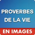 Proverbes De La Vie En Images