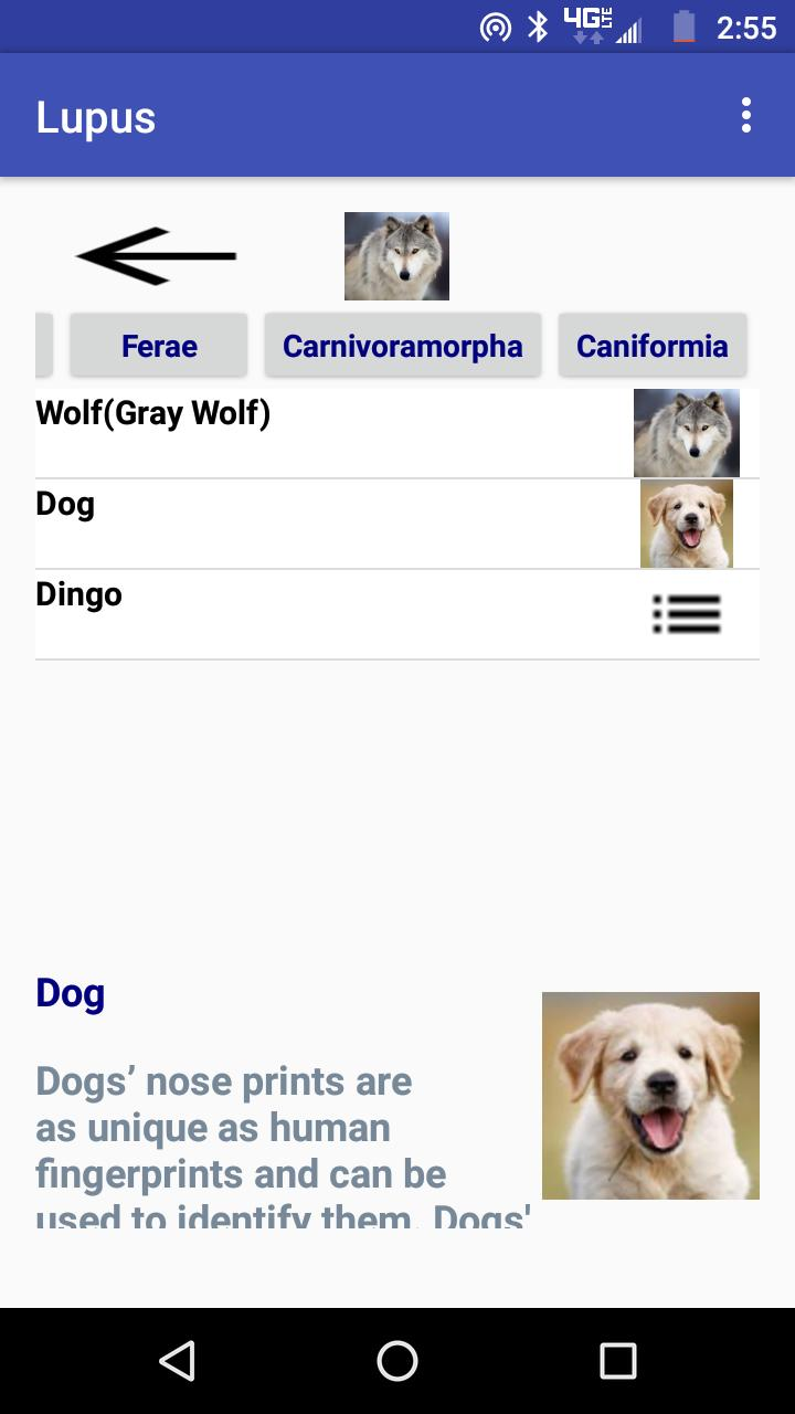 Animal Quiz Free for Android - APK Download