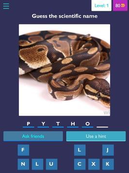 Scientific name quiz-Animals poster