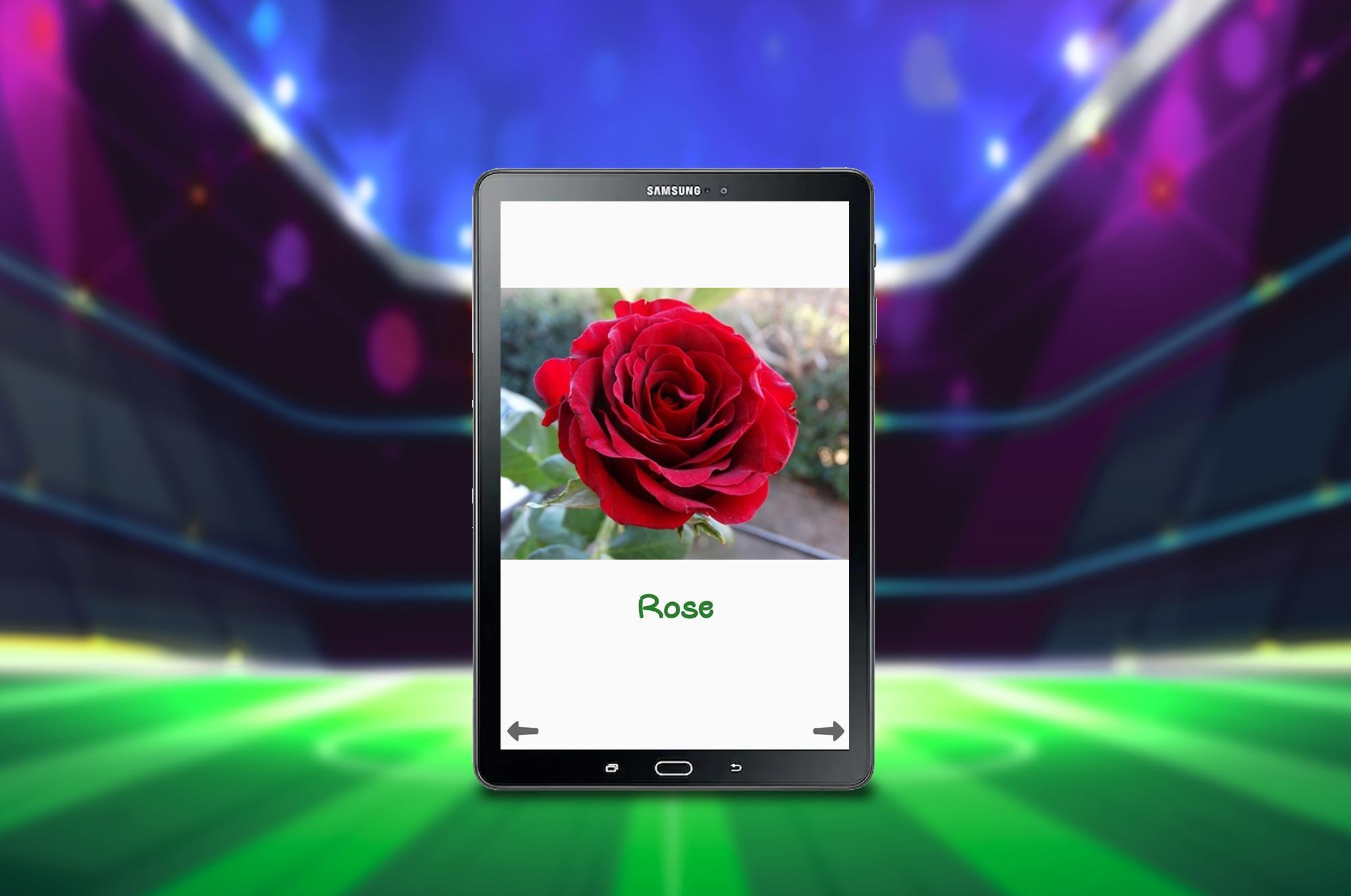 Picture Dictionary for Kids for Android - APK Download