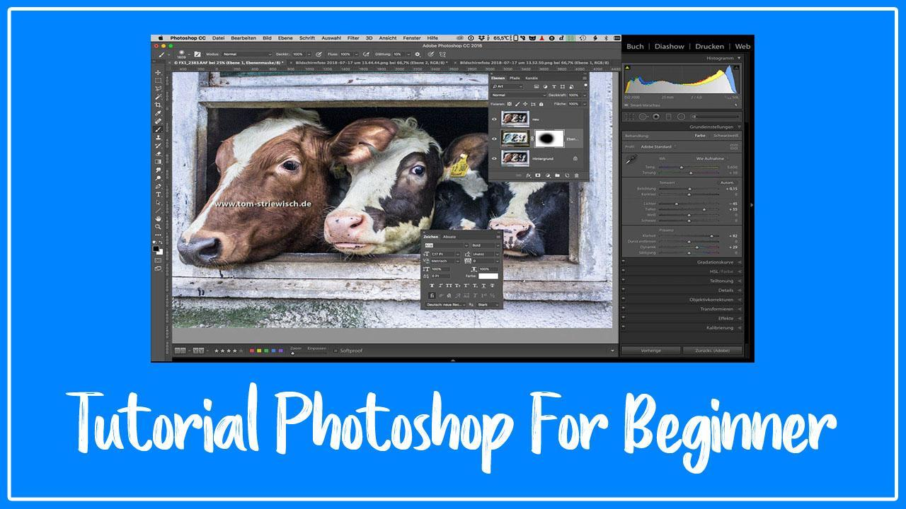 Tutorial Photoshop For Beginner (English Versions) for