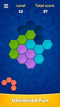 Hexa Block Puzzle bài đăng