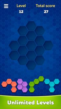 Hexa Block Puzzle ảnh chụp màn hình 14