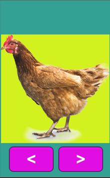 Animal Sounds App for Kids poster