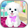 ikon Puppy Pet Care - Caring For Puppy Pet