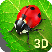 Bugs Life 3D Free icon