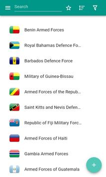 Armed forces poster