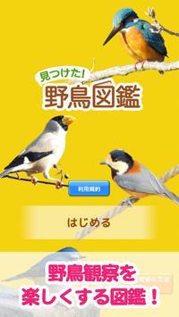 見つけた!野鳥図鑑 poster