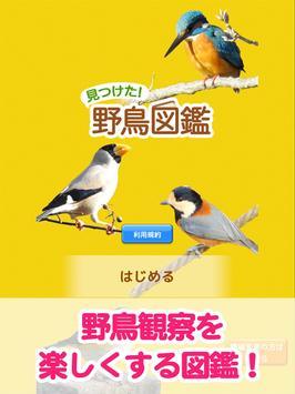 見つけた!野鳥図鑑 screenshot 10