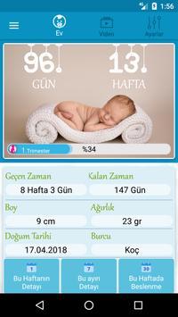 Hamilelik Takibi poster