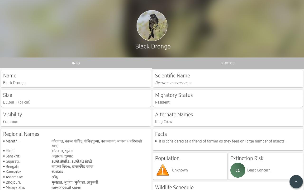 Indian Birds For Android Apk Download