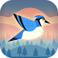 Bouncy Bird: Casual & Relaxing Flappy Style Game