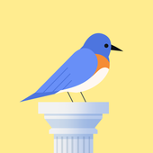 Bouncy Bird: Casual & Relaxing Flappy Style Game icon