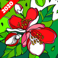 Coloring Apps - Coloring book free 2020