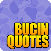 Bucin Quotes 2020 For Android Apk Download