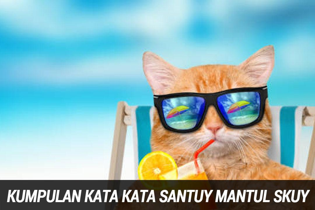 Kata Kata Santuy Lucu For Android Apk Download