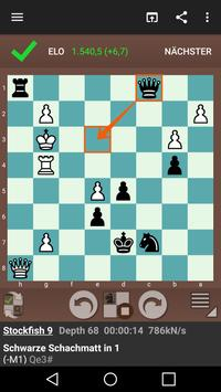Fun Chess Puzzles Pro screenshot 1