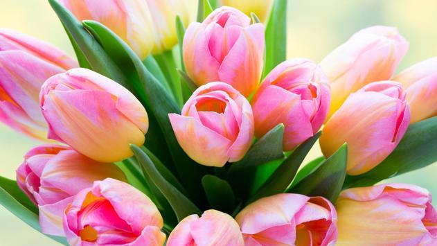 Tulips Live Wallpaper screenshot 8
