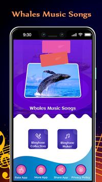 Whales Music Songs poster