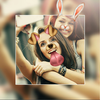 Editor de fotos Picsa: Foto Collage & Editar fotos icono