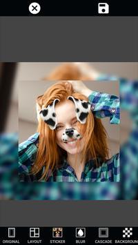 Photo Editor & Filter, Sticker & PIP Collage Maker screenshot 16