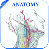 Gray's Anatomy - Atlas || Offline || Free icon