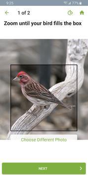 Merlin Bird ID syot layar 3