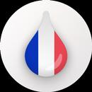 Drops: Belajar bahasa dan kata-kata Prancis APK
