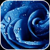 Dew Drops HD live Wallpaper icon