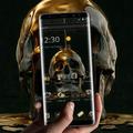 Liquid Gold Black Skull Business Theme