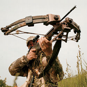 Crossbow Shooting deluxe icon
