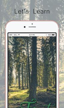 Forest screenshot 1