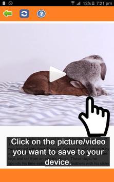 Video Downloader für Instagram Screenshot 1