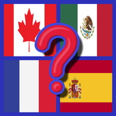 Quiz flags icon