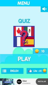 Quiz flags poster