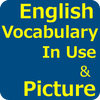 English Vocabulary In Use with Picture ikona