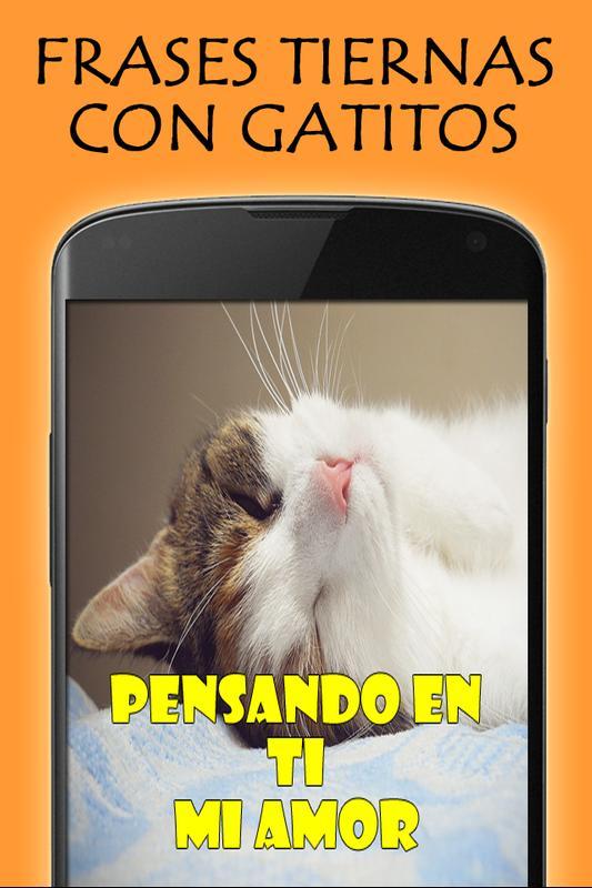 Frases Tiernas Con Gatitos Fur Android Apk Herunterladen