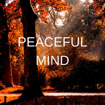 Peaceful Mind poster