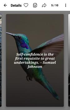 Self Confidence Quotes - Boost Yourself Confidence screenshot 2