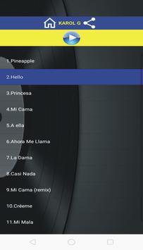 Pineapple Lyrics App poster