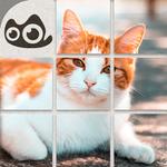 Meow Puzzle-Puzzle Cute Cat APK
