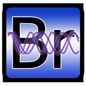 Personal Biorhythms Calculator icon